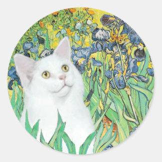Iris - gato blanco pegatina redonda