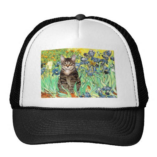 Iris - gato de tigre del Tabby 30 Gorra