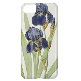 """Iris Germanica, de """"Les Liliacees"""", 1805 Funda Para iPhone 5C"""