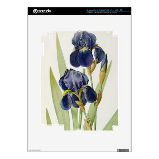 Iris Germanica, from `Les Liliacees', 1805 Decals For iPad 3