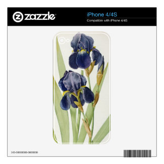 Iris Germanica, from `Les Liliacees', 1805 Decals For The iPhone 4S