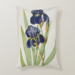 Iris Germanica, from `Les Liliacees', 1805 Accent Pillow