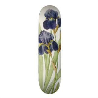 Iris Germanica, from `Les Liliacees', 1805 Skateboard Deck