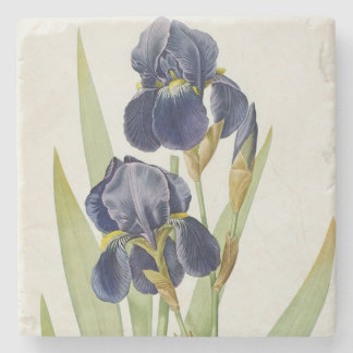Iris Germanica, from `Les Liliacees', 1805 Stone Coaster