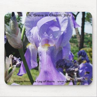 Iris, Greve in Chianti, Italy Mouse Pad