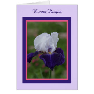 Iris Happy Easter in Italian -- Buona Pasqua Card