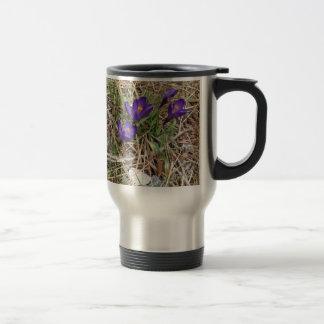 Iris hermoso 2 de la montaña púrpura tazas de café