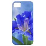 Iris hermoso del fractal y su significado iPhone 5 protector