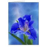Iris hermoso del fractal y su significado felicitacion