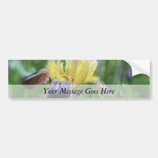 Iris histórico - púrpura y amarillo pegatina para auto