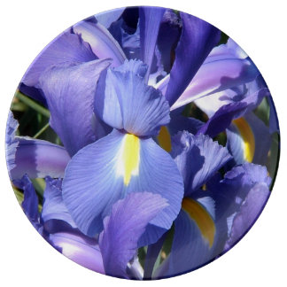Iris holandés púrpura platos de cerámica