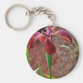 Iris imberbe coloreado moho llavero redondo tipo pin
