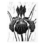 Iris - impresión de bloque tarjeta postal
