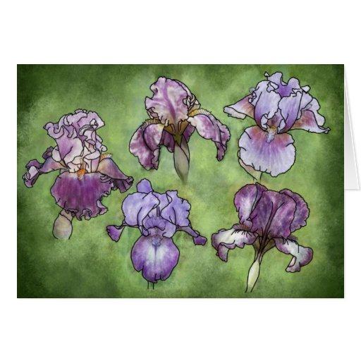 Iris in Purple Greeting Card