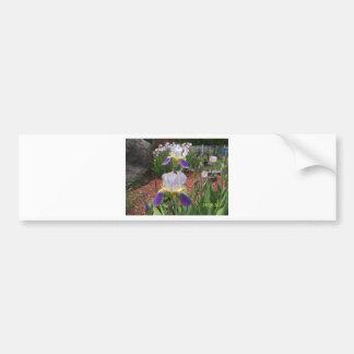 Iris in the day car bumper sticker