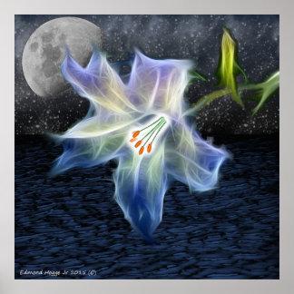 Iris in the Night Poster