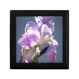 Iris in the sky gift box