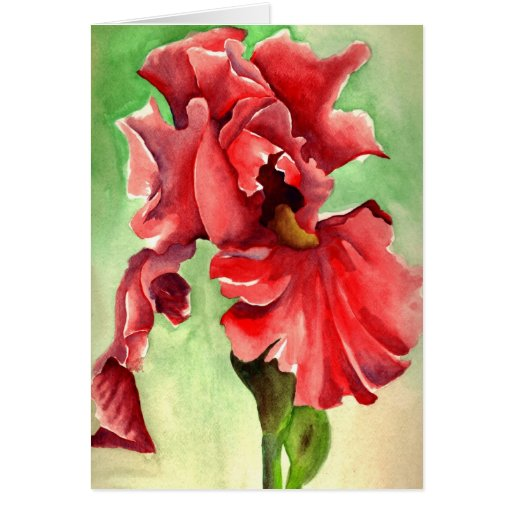Iris in Watercolor - Withanf Fine Art Cards