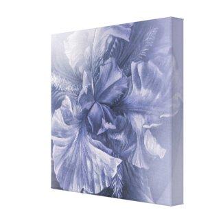 Iris inner beauty (anniversary silver hue) wrappedcanvas