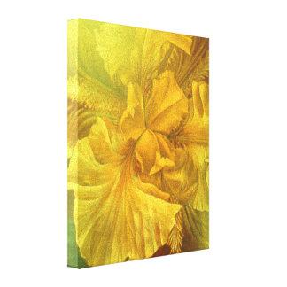 Iris inner beauty (warm yellow) art canvas print