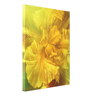Iris inner beauty warm yellow art canvas print