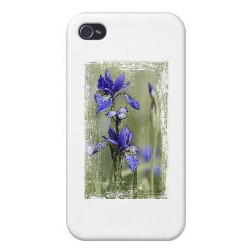 Iris iPhone 4 Fundas