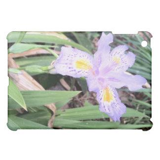 Iris japonés