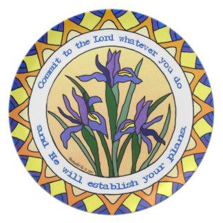 Iris japonés de la placa del 16:3 cristiano de los plato de comida