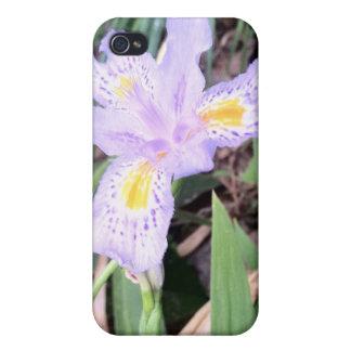 Iris japonés iPhone 4/4S carcasas