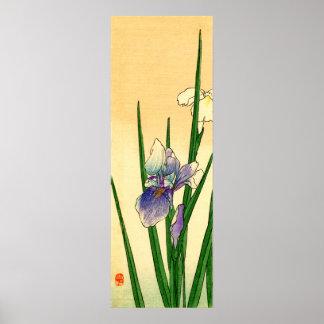 Iris japonés no.1 póster