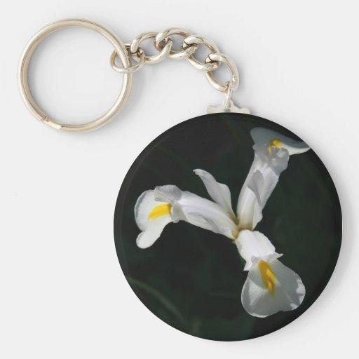 Iris Key Chains