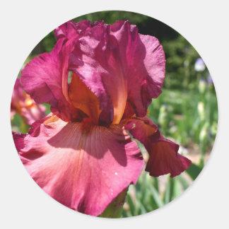 Iris-lady friend classic round sticker