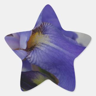 """iris """"lengua"""" de la cebra (cuadrado) pegatina en forma de estrella"""