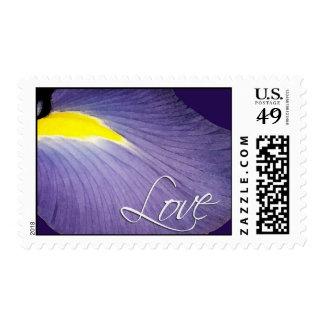 Iris Love Stamp