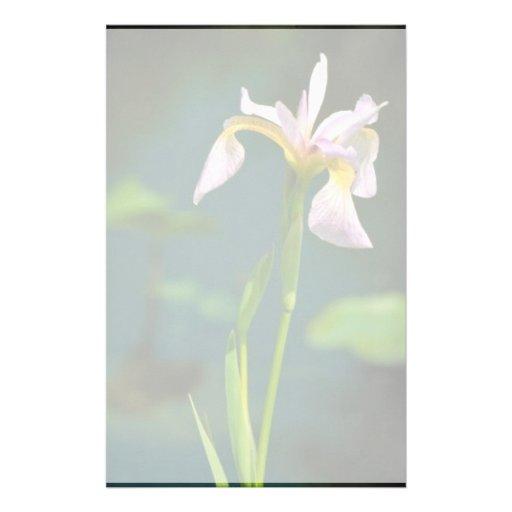 Iris meridional de la bandera azul papeleria