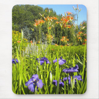 Iris N Daylilies garden Mousepad