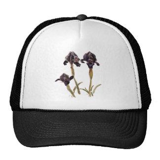 iris negro de Jordania Gorro De Camionero