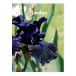 Iris negro postal