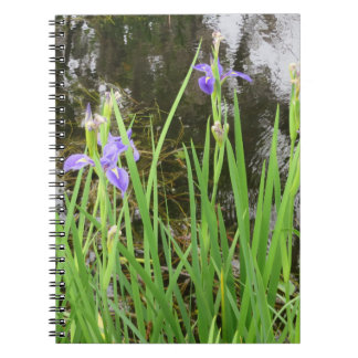 Iris on the Water Edge Photo Notebook(80 Pages ) Notebook