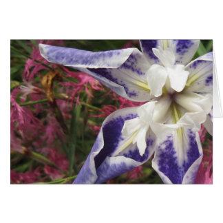 Iris opening card