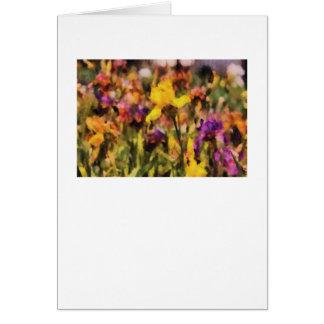 Iris - Orchestra Cards