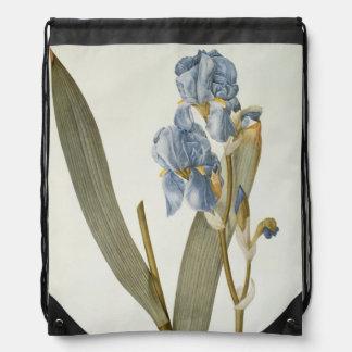 "Iris Pallida, de ""Les Liliacees"", 1812 Mochilas"