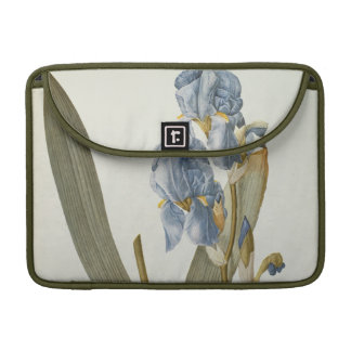 Iris Pallida, from `Les Liliacees', 1812 MacBook Pro Sleeve