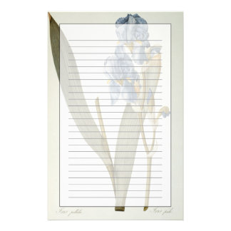 Iris Pallida, from `Les Liliacees', 1812 Stationery