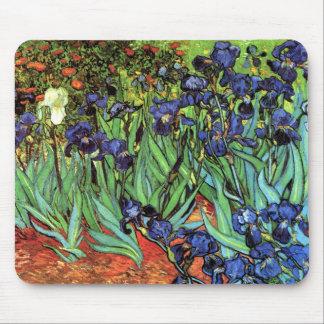 Iris por la bella arte de Van Gogh Tapete De Raton