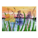 iris por lake1.jpg postal