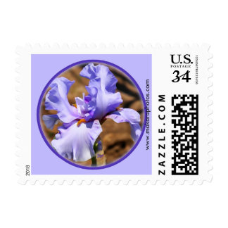 Iris Postage Stamp- choose size & denomination