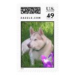 Iris Puppy Postage