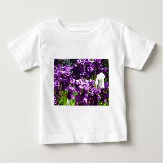 iris,purple 2 shirts