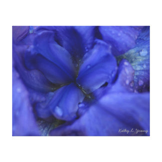 Iris púrpura 16x20 impresión en lienzo